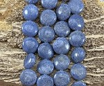 Natural Blue Coral 17mm Coin